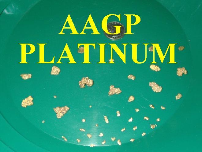 AAGP Platinum Membership